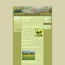 وب سایت شخصی آقای حمید نصری